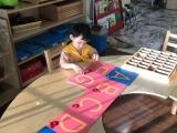 Full Montessori Class' Montessori Time
