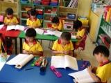 Montessori Maths- Decimals