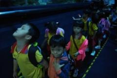 Outing to Aquaria 11/03/16