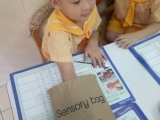 Tadika PAC 5 years old Science (Materials)